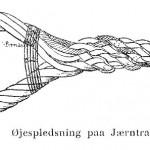Fra Kudsk Jensens bog, en øjesplejs i vire.